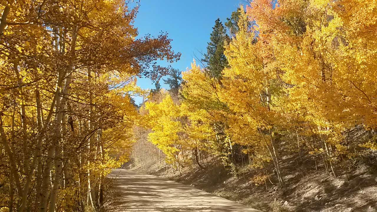 9news 9 best drives to see fall colors in colorado sciox Choice Image