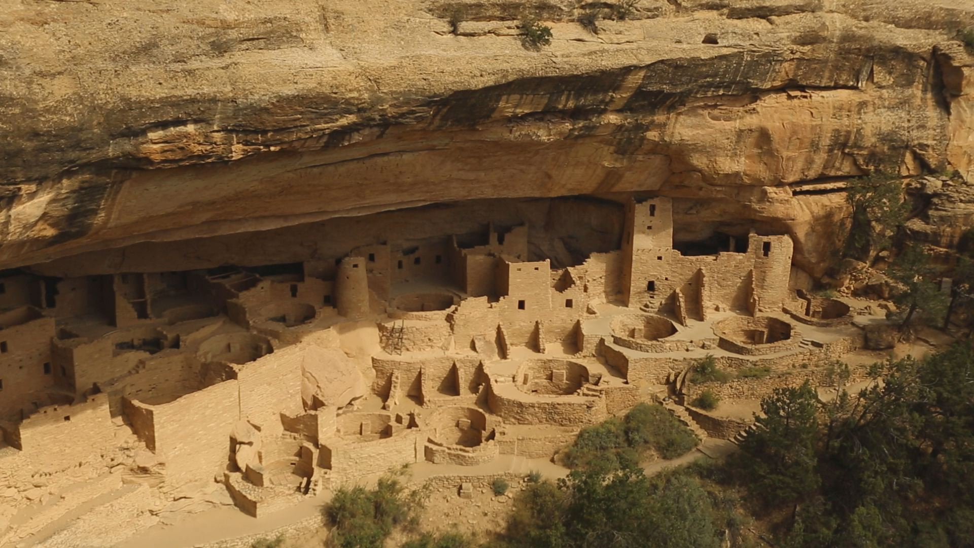 mesa verde national park singles America's national parks tours from globus include famous destinations such as the experience grand canyon national park with its spellbinding landscapes that.