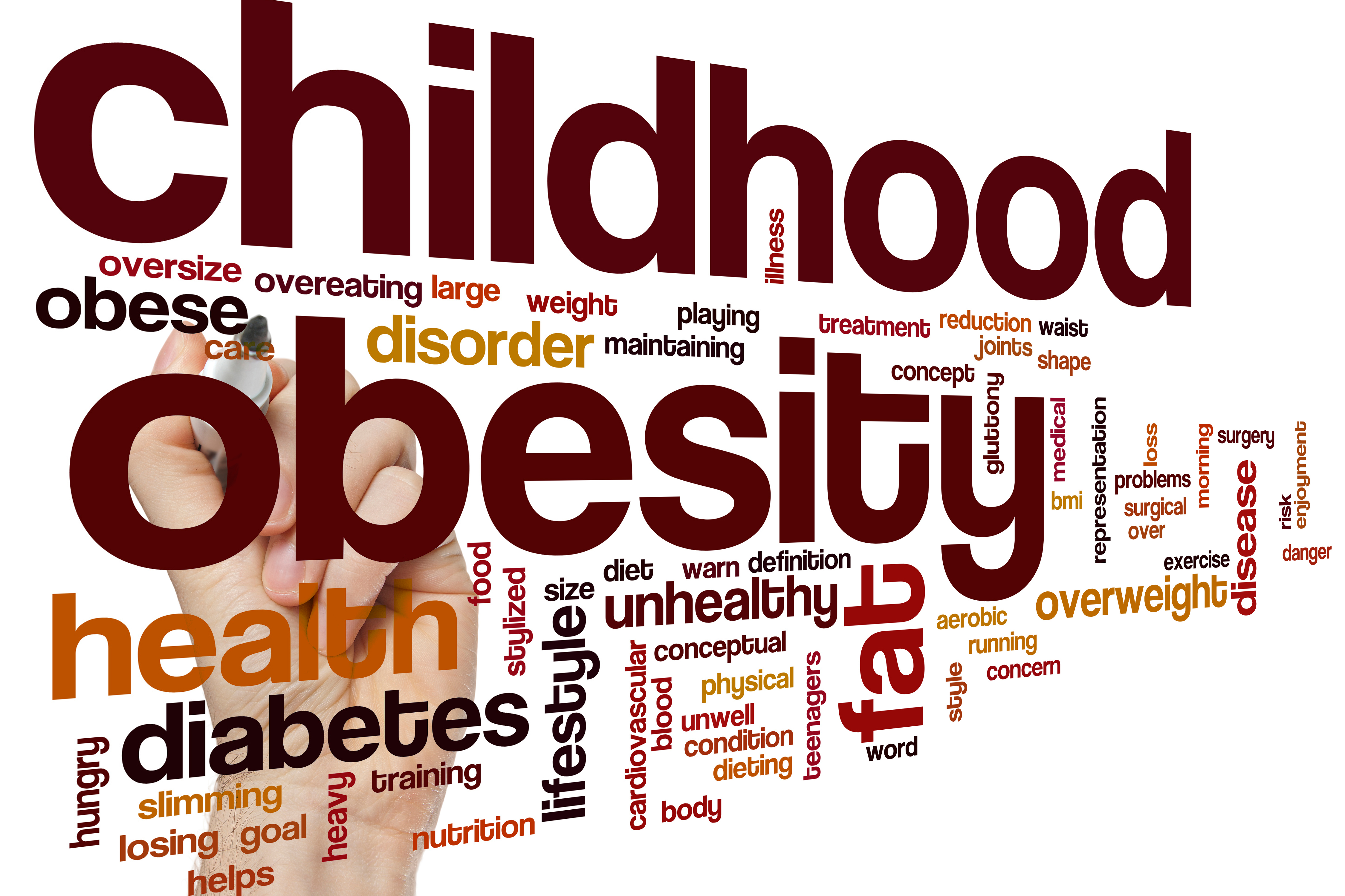 obesity in youth essay