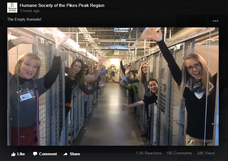 Shelter staff celebrates empty kennels after successful adoptions | 9news.com