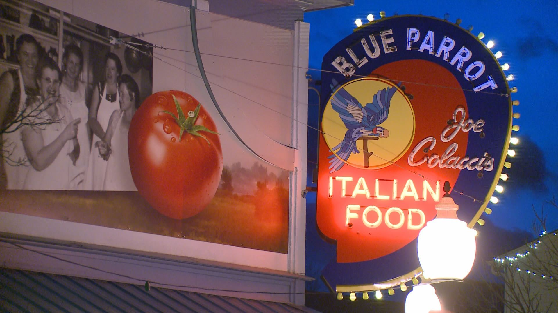 Congratulate, Blue parrot restaurant louisville co you for