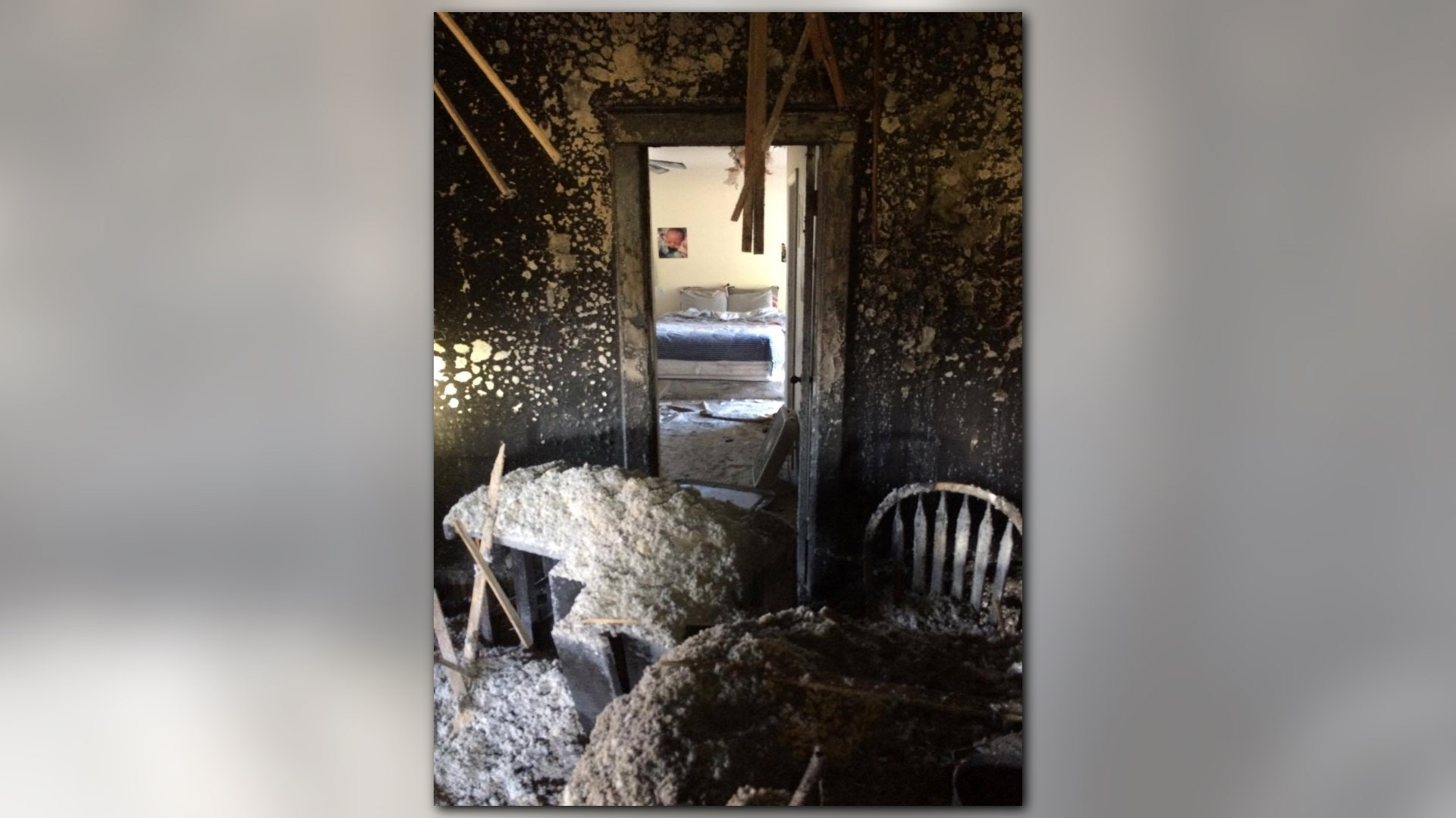 Close Door On Fire : Dogs survive rifle house fire after owners close bedroom